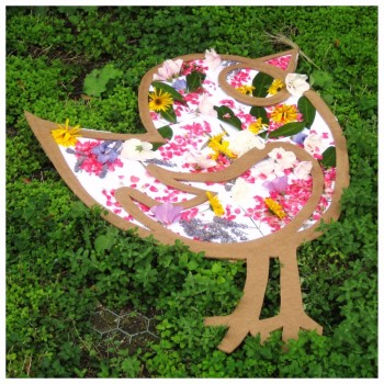 L'oiseau de l'été
